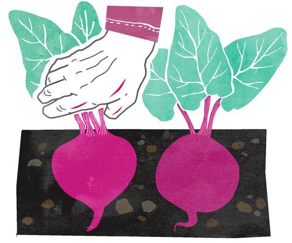 Illustration for Amnesty Magazine by Eeva Meltio