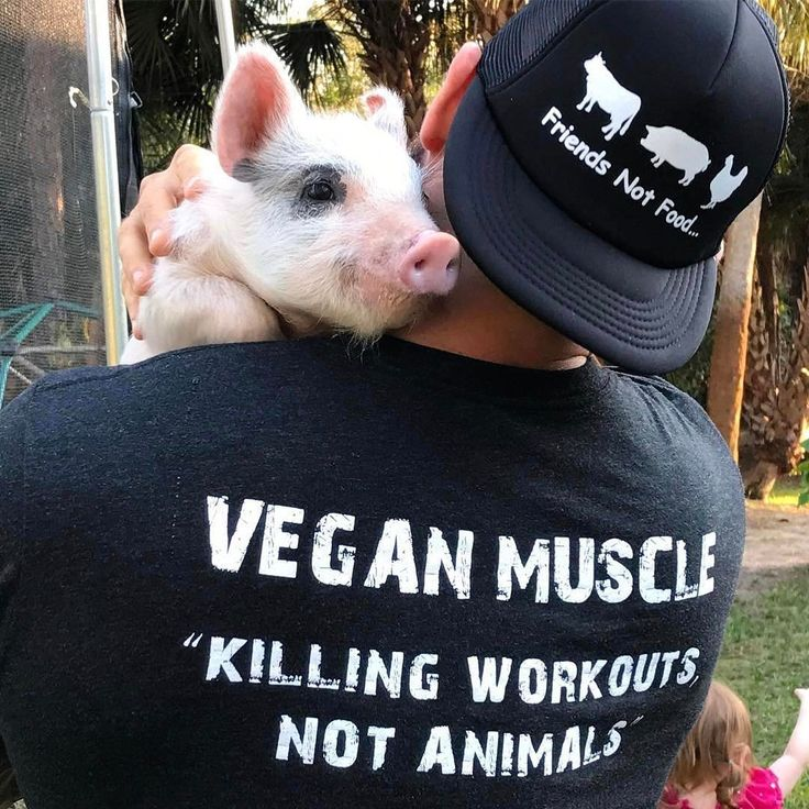 """Aww  Meet superstar vegan bodybuilder and animal rights activist Jordan @Conscious_Muscle!  """"It's very easy to understand why I do not support the #meat and #dairy industry and made the decision to live a #vegan lifestyle. How could I possibly contribute to an industry that brings over 70 billion lives a year into this world solely for the purpose of exploitation, suffering, and murder for profit? Everyone claims they want a better world. Well that means we all have to do our part. Choosing…"""