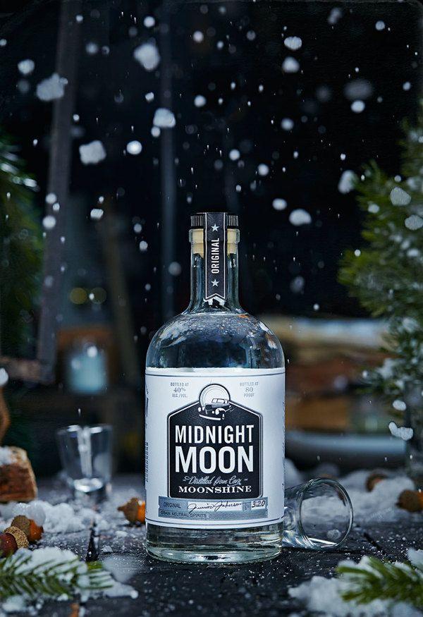 Midnight Moon Holiday by Vanessa Rees, via Behance