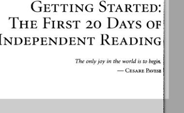 pdf of Fountas & Pinnell- First 20 days of Reading