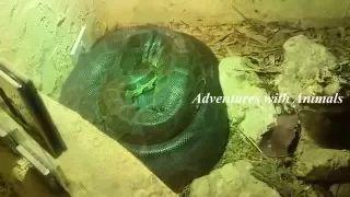 The Adventure's world - YouTube