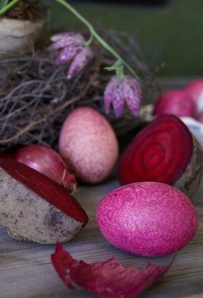 Eier färben mit Roter Bete