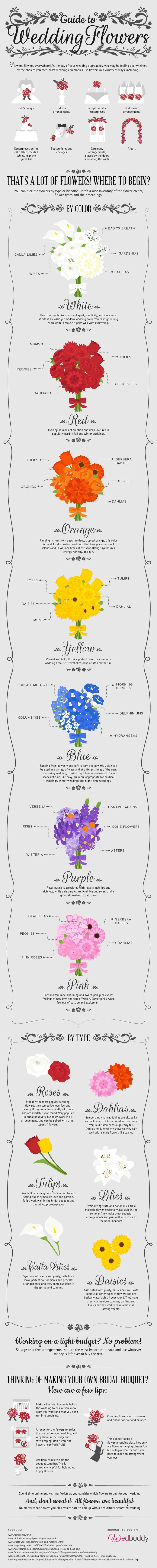 The flowers you choose for your perfect wedding day are important. They'll not only be photographed, but will be instrumental to the décor and theme of your wedding. Because flowers are an integral part of your wedding, you'll want to make sure you know all you can about the flowers you choose. Use this infographic to help you decide what flowers best suit your personal style at:	http://blog.wedbuddy.com/guide-flowers-ig/