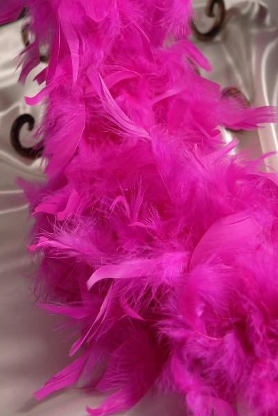 Best ideas about feather boas on pinterest pink