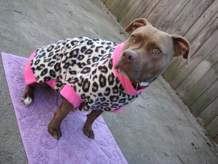 Valentine Leopard Print & Pink Heart Skull n Crossbones Fleece Dog Coat - Large. $27.00, via Etsy.