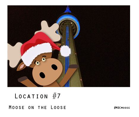 Enter to WIN one of five #MDCmoose ornaments! Visit facebook.com/muscle.ca and find the Moose on the Loose! Contest tab