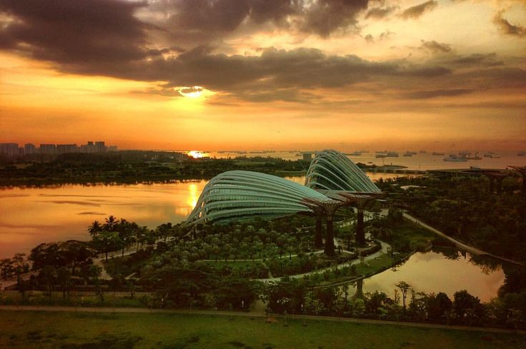 """@live_life_love_travel on Instagram: """"Sunrise overlooking the Gardens By The Bay."""