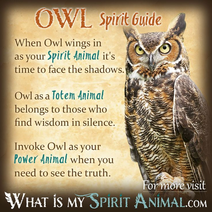 https://whatismyspiritanimal.com/spirit-totem-power-animal-meanings/birds/owl-symbolism-meaning/