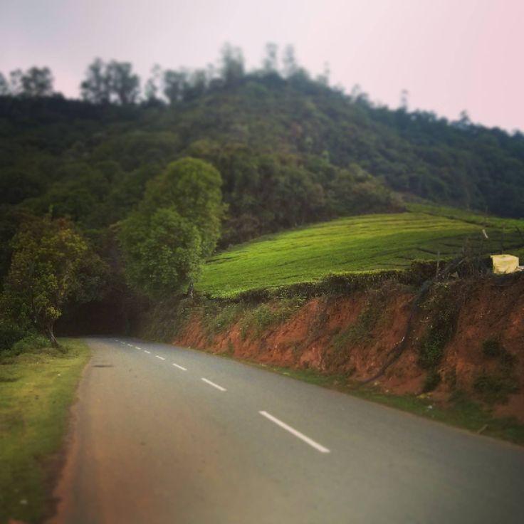 Roadtrip to Ooty #Road #Trips #travel #Ireland