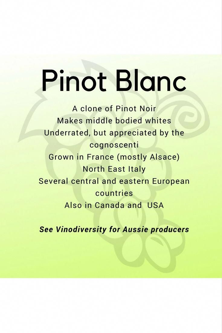 Pinot Blanc White Wine Variety Flies Under The Radar These Are A Few Aussie Producers Who Making Extraordinary Wines From This Wineg