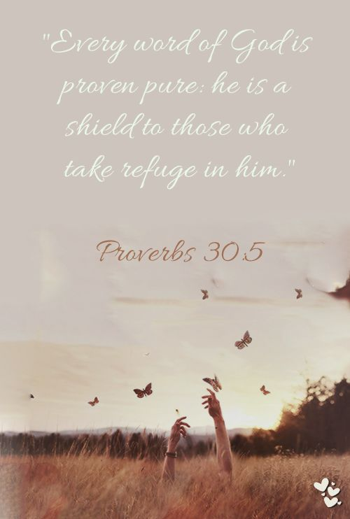 Proverbs 30:5 ~ Every word of God is proven pure: he is a shield to those who take refuge in him.