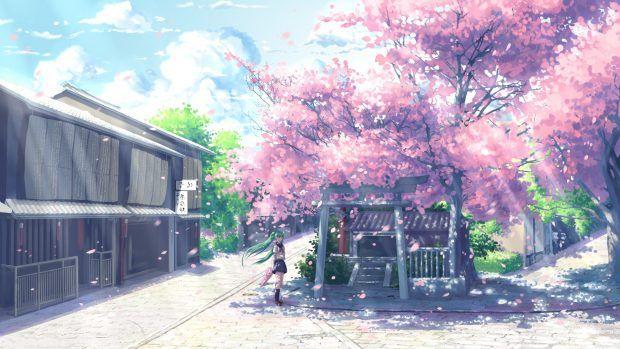 Anime Cherry Blossom Desktop Wallpaper Anime Scenery Anime Wallpaper 1920x1080 Anime Background