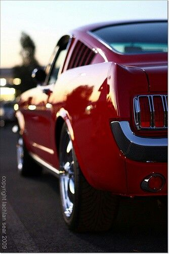 Muscle car #MuscleCars #LoveOnlineToday.com