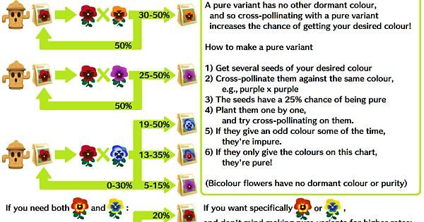 Imgur Animal Crossing Pocket Camp Animal Crossing Pollination