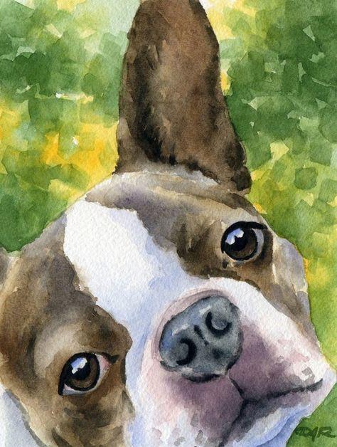 BOSTON TERRIER Dog Watercolor Signed Fine Art Print by Artist DJ Rogers