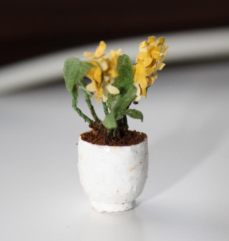 Not very pretty, but still a potted plant.    Inte så fin, men ändå en krukväxt.