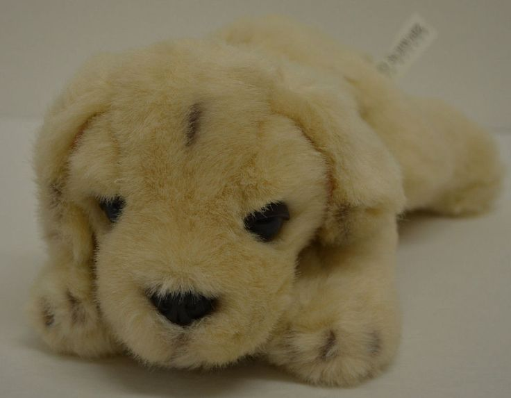 "FAO Schwarz Lab Puppy Dog Plush Beige Bean Bag Laying 11"" #FAOSchwarz http://stores.ebay.com/Lost-Loves-Toy-Chest/_i.html?image2.x=0&image2.y=0&_nkw=fao+schwarz"