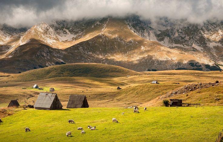 Черногория за неделю - что посетить, где жить, что попробовать. Поездка в Котор, Дурмитор, Герцег-Нови, шоппинг в Подгорице, лучшие рестораны Черногории.
