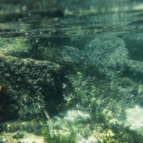 underwater camera - bronte beach   http://instagram.com/panida_w/