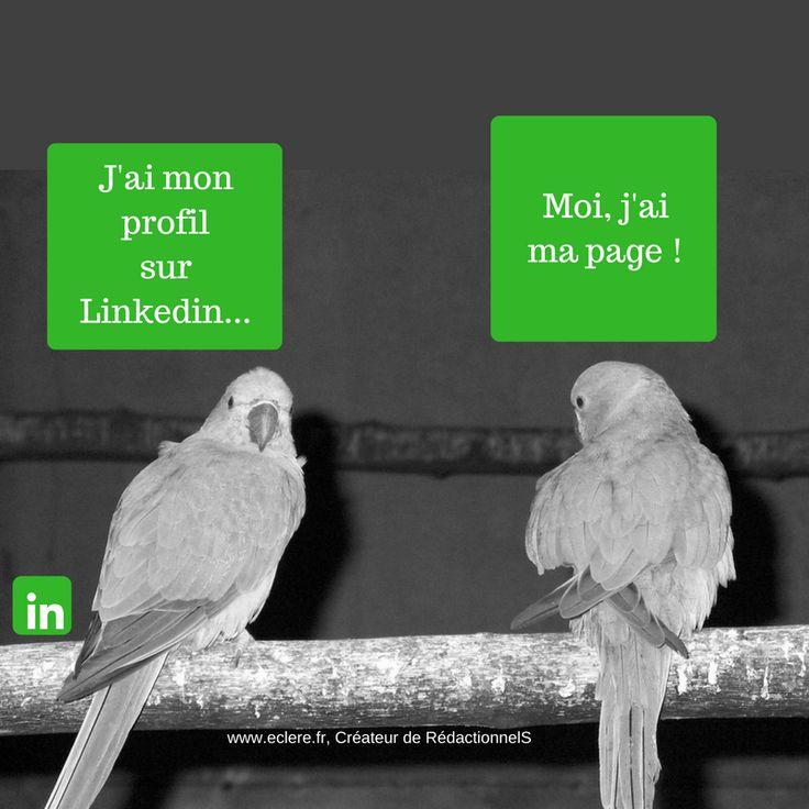 Linkedin, page ou profil, faut-il choisir ? Aujourd'hui Linkedin atteindrait 11 millions de membres en France, et plus de 380 millions dans le monde. En France, il dépasserait Viadéo qui est le réseau professionnel historique de l'hexagone. Si Viadéo a un profil de type plus proche des TPE-PME et entreprises de proximité, Linkedin semble être plus adapté par son aspect international à des entreprises de plus grande ampleur. Mais cette différence a tendance à diminuer... #seo #linkedin #pme