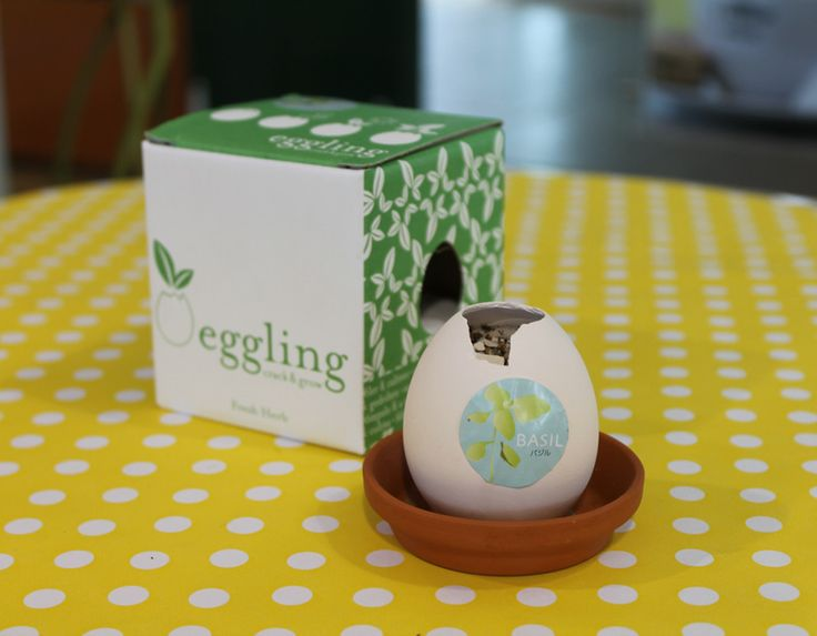 What an eggcellent idea! Hatch a herb in this unique mock eggshell.