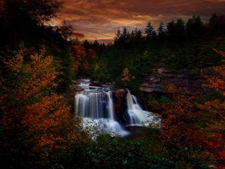 potok na podzim v lese