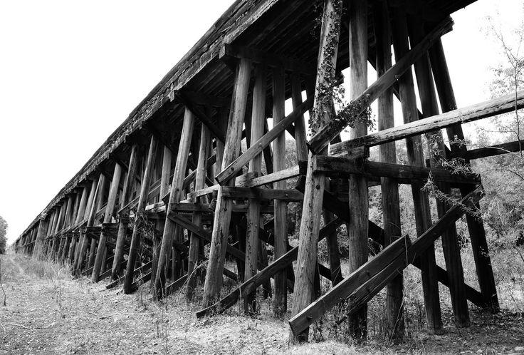 https://flic.kr/p/aj8F1c | Union Pacific Railroad Trestle, East of Trinity River, Oakwood, Texas 0903111301BW