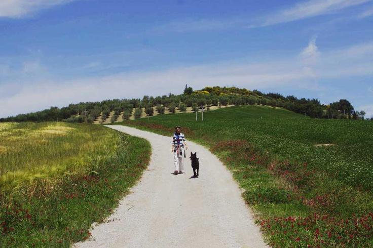 """Off Leash nature walk on June 1st. Passeggiata """"Senza Guinzaglio"""" il 1° giugno 2013"""