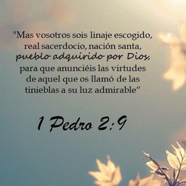 1 Pedro 2:9 #AmaaDiosGrandemente #1y2Pedro