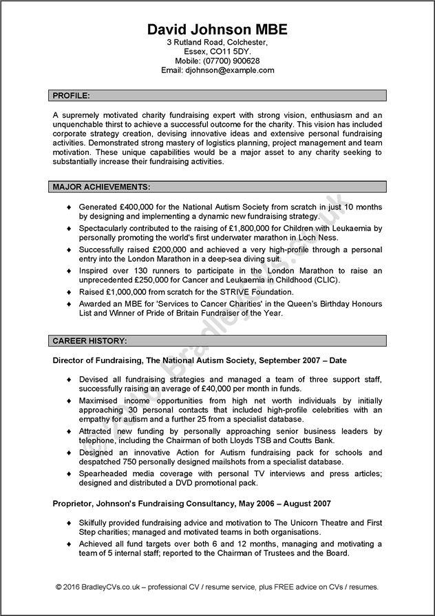 example CVs by Bradley CVs Resume writing services