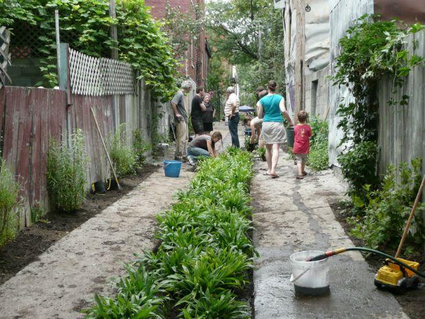Découvrez comment remettre la végétation au cœur des villes pour améliorer notre qualité de vie et répondre aux défis environnementaux qui s'offrent à nous