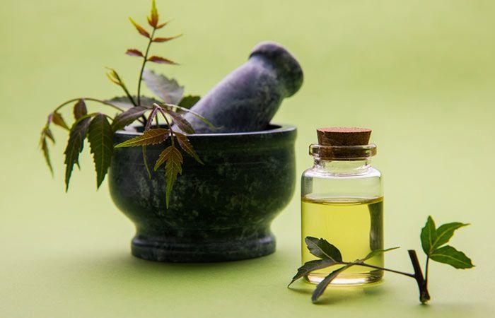 El Neem es un regalo increíble de la naturaleza, ofrece beneficios para la salud y