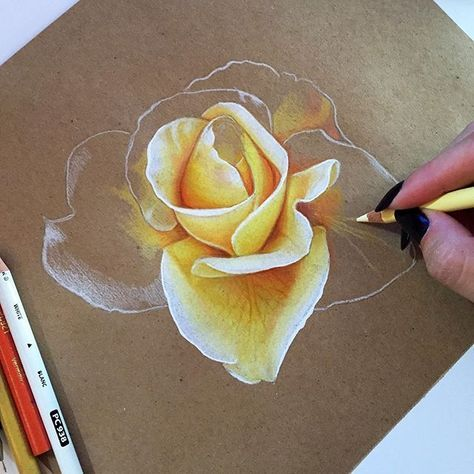 Oh recycelte Skizze, wie ich dich vermisst habe !! #coloredpencil #rose #drawing #laharstudios #beepaper #prismacolor