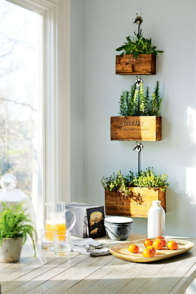 From the '11 Indoor Plant Ideas' feature in the March 2014 issue of Inside Out magazine