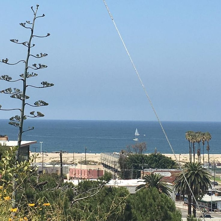 The beauty of Playa del Rey California. #playadelrey #pdr #playadelreybeach #beach #ocean #sailboat #springtime #losangeles by sackssister2