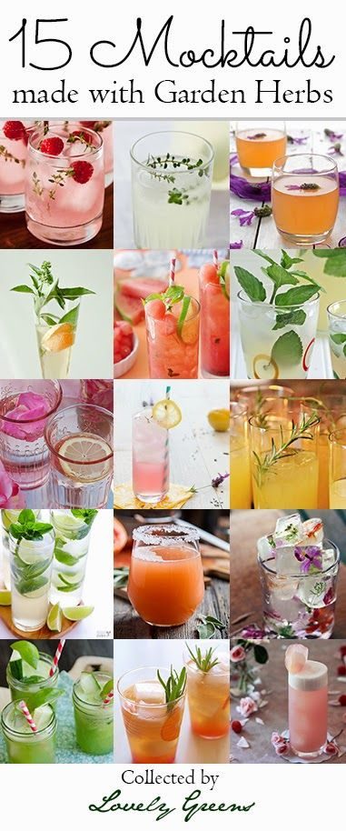15 Mocktail Recipes made with Garden Herbs | Straight from the garden, this collection of delicious and refreshing drinks are alcohol-free alternatives to their boozier cousins.
