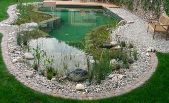 Portfolio images of natural swimming pool installations completed by California BioNova.