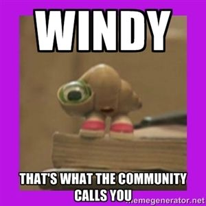 Windy That's what the community calls you   marcel the shell