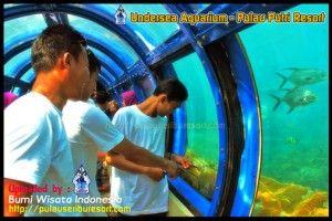 Undersea Aquarium - Pulau Putri Resort  #pulauputri #underseaaquarium