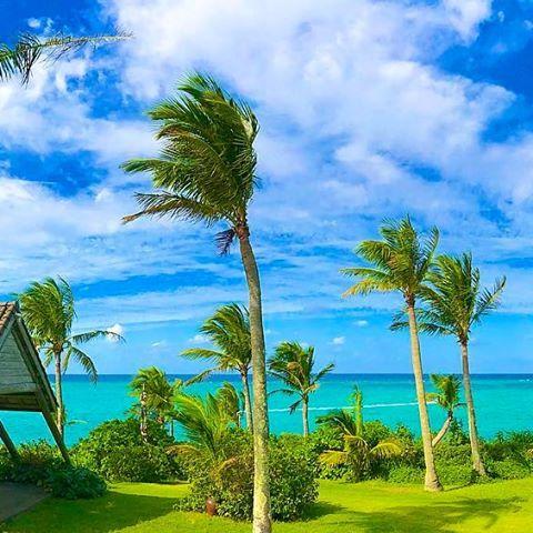 【tingara_nana】さんのInstagramをピンしています。 《☀ムーンビーチホテル☀ ・ #okinawa #沖縄 #リザンシーパークホテル谷茶ベイ #海 #beach #夏 #summer #夕日 #sunset #ハイビスカス #三線 #エイサー #スタバ #starbucks #カフェ #沖縄フォト祭り #ティンガーラ #ムーンビーチホテル》