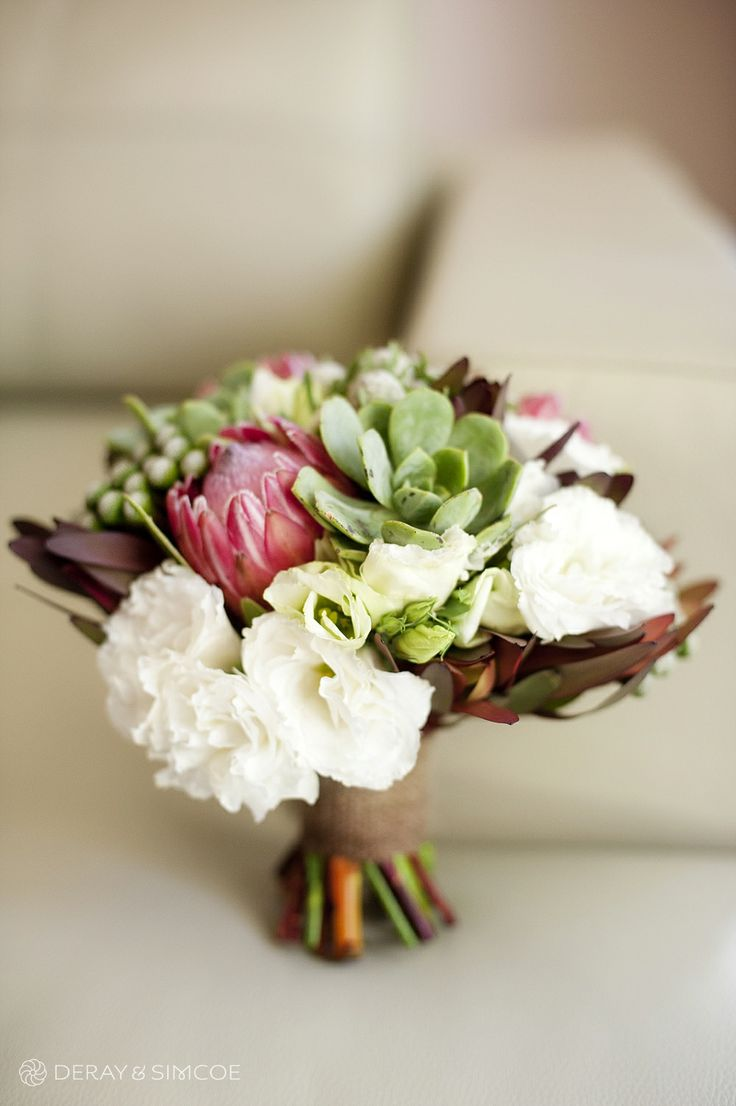 Brides bouquet featuring succulents and proteas. Photography by DeRay & Simcoe Bouquet by Pekho