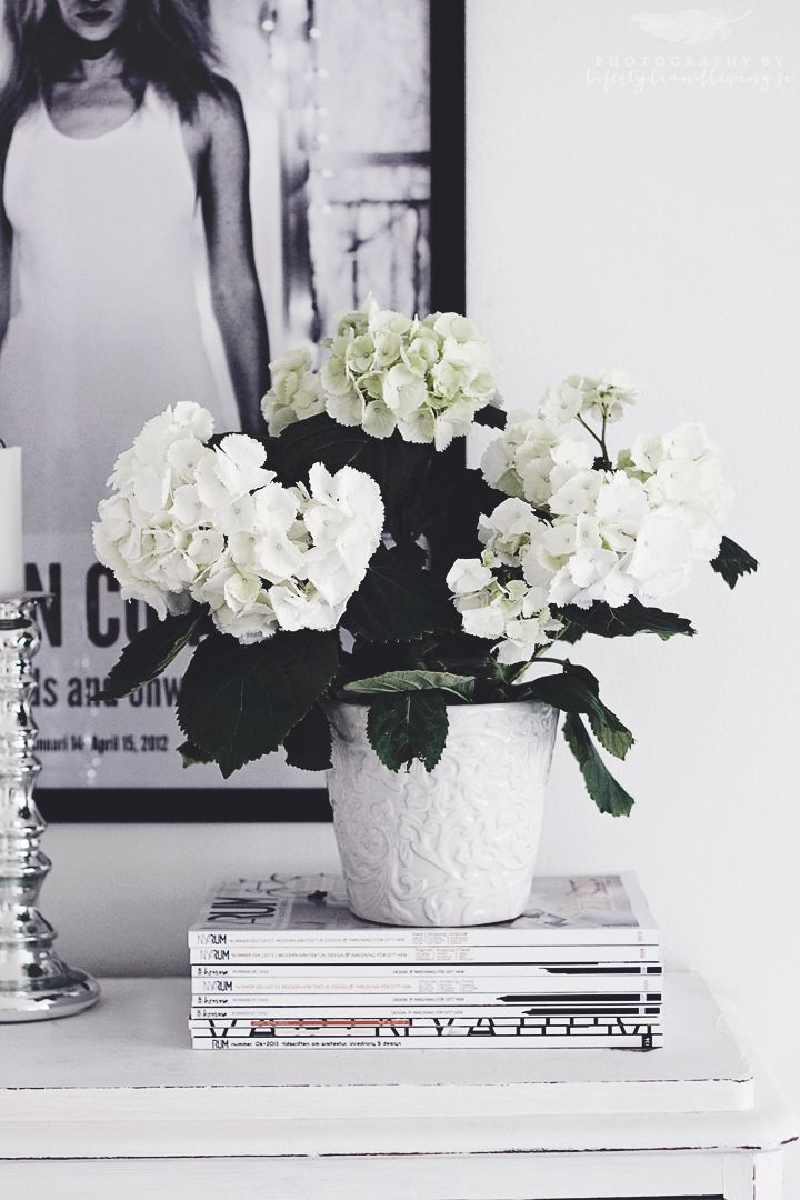 Love hydrangeas, they are significant in size so they add more. #justcallmargystaging&redesign #affordablestyle #creativeflowers