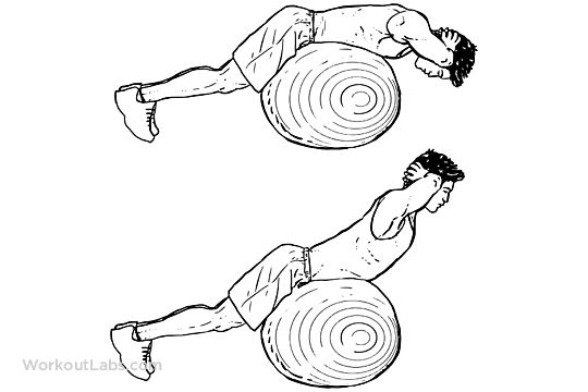Stability / Swiss / Exercise Ball Back Extensions