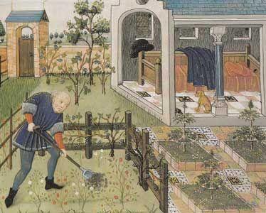 Enluminure jardin medieval middle ages pinterest for Jardin aromatique