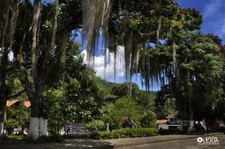Pinchote Santander Colombia