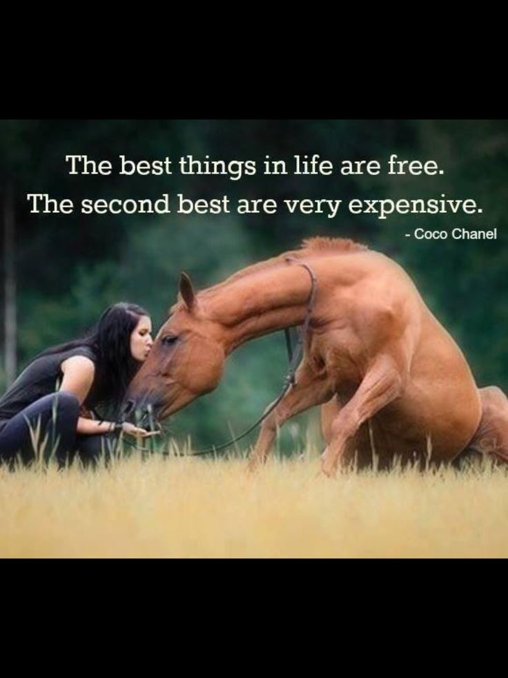 No, the best things are the expensive ones