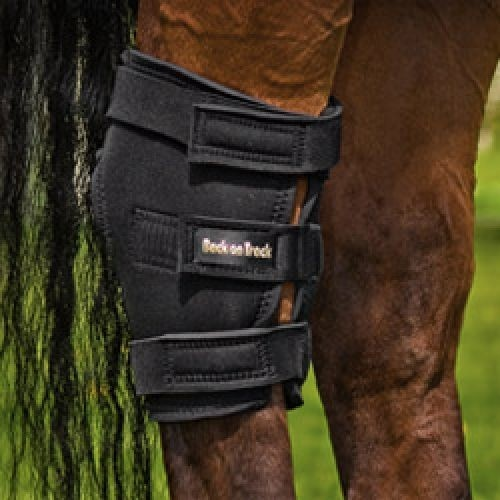 Back on Track hock boots- I've heard lots of good things about Back on Track products and I would love to try them... expensive though