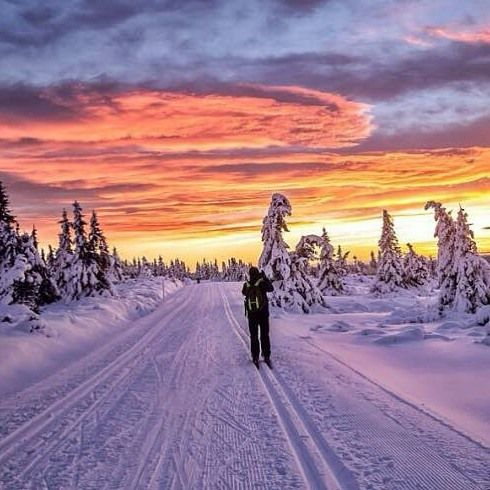 "nat.geography: ""Nordseler Lillehammer in Norway Photograph By @annemeide"""