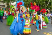 Фестиваль цветов, остров Мадейра, Португалия — стоковое фото