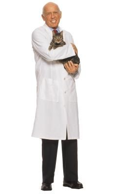 Forma holística para tratar las infecciones del tracto urinario en gatos | eHow en Español